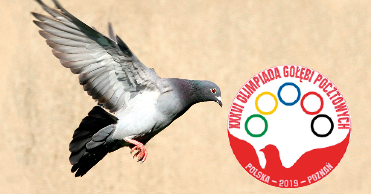 36th Olympics Poznan