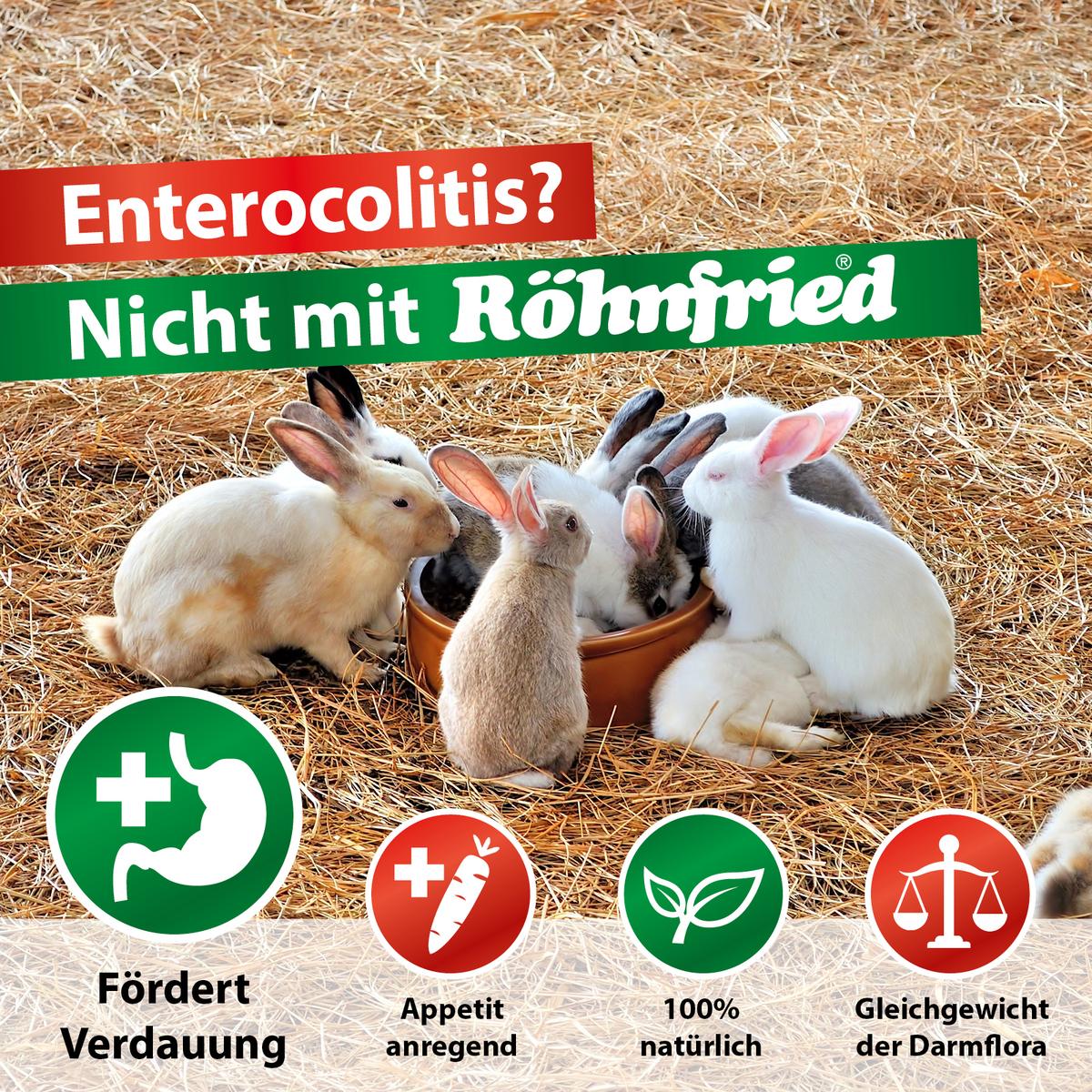 Kaninchen - Enterocolits - RHDV-2 - Vitaminmangel - Desinfektion Pro - Darmwohl - VitaKanin