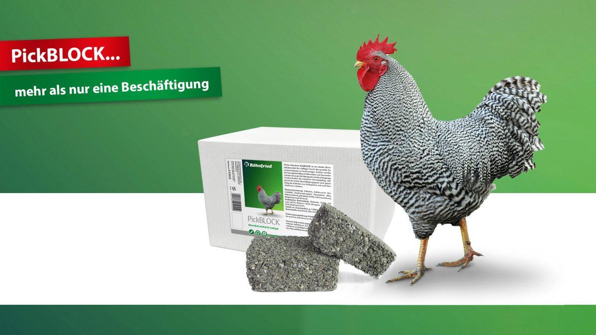 Röhnfried-PickBLOCK-Beschäftigung-Mineralien-Mineralstein-Hühner-Geflügel